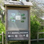 P.T. Marvell Preserve