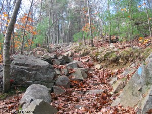 The Skyline trail at Blue Hills is rocky and steep
