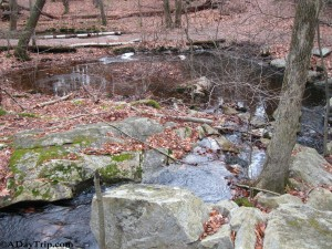 Babbling brooks and streams along the trail at Wilson Mountain Reservation
