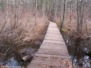 The bridge over water along the blue trail at Wilson Mountain Reservation.